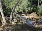 Creekside hammock for relaxing and unwinding