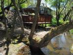 Another view of the cabin from the creek.