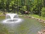 back of lodge pond