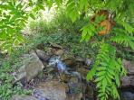 small waterfall that runs into pond