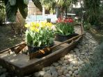 Boat garden