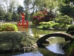 Botanic Garden pond