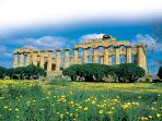 Templi di Selinunte a 40 Km da Sciacca