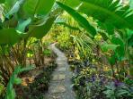 Path to bathhouse