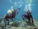 Scuba Diving in Puerto de Mazarron