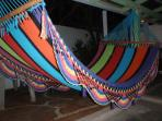 Comfortable Hammock to Lounge In!