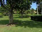 17 acres of lush lawn areas in the condo complex.