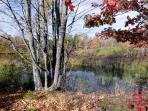 Upper pond in the fall