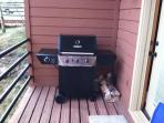 New Barbecue on Private Deck