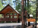 COMFY COZY MOUNTAIN CABIN - RELAX IN THE PINES!