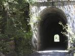 The Hiawatha Trail...another very cool event. Bike ride through old train track tunnels.
