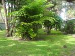 Westerly side yard