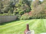 Large lawn backyard