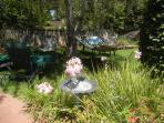 Serene, lush garden