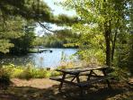 Picnic spot by the water