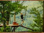 Zip Lining is a great pastime here. Go to www.Coeurdaleneadventures.com to book your tour.