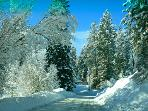 This is our road in the winter. The county does a great job of keeping it clear so just drive slow!