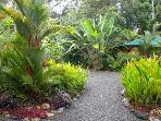 Explore the many paths throughout the beautiful landscaped tropical gardens.