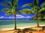 ONE OF MAUI'S MANY SPECTACULAR BEACHES