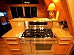 40' professional series Frigidaire stove/range
