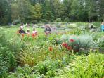 Local public garden