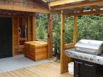 Side yard with bbq area.