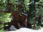 Vargas Cabin (Delight in the Woods)