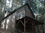 Hicks Tree Fort
