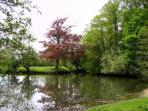 vue sur le parc, l'étang