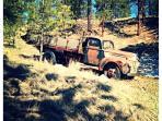 Authentic Ranch Decor