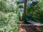 Hammock and Path to Ice House Pond (Old House Pond)
