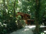 Main floor of chalet, nestled in the rainforest with parking