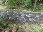 Helton Creek- 2