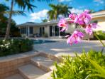 Breathtaking Private Heated Pool Lounge Area...