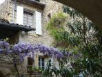april in the courtyard