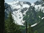 Grant Glacier located in the Flathead National Forest behind our property.