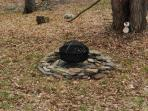 Fire Pit in Back Yard - We do NOT supply the wood but there are many local shops the sell wood..