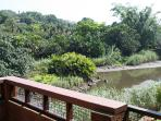 View from verandah onto the lagoon