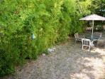 Private backyard area, bamboo screen from neighbors
