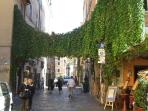Trastevere Area 20 mins by bus