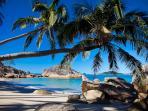 Doorila Beach, Bedarra Island