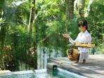 Daily Bali Hindu offerings
