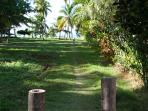 less than 50 meter barefoot walk to the beach along this path.