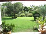 Property garden