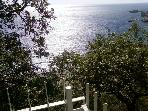 Sea view from wooden table