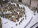 View from the window - Old Jewish cemetery