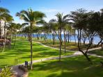 a lush landscape with lots of grass to run around, just next to the beach - voted 'top 10' in the US