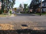 Crestmont avenue