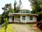Natureroots villa