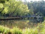 Enjoy changing lake views